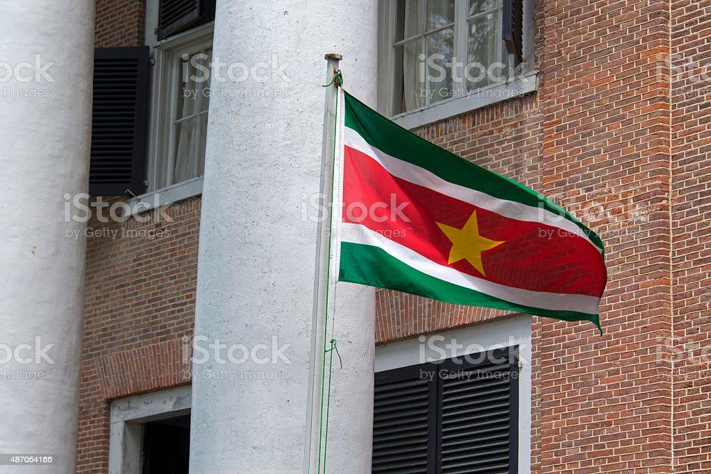 Suriname flag stock photo