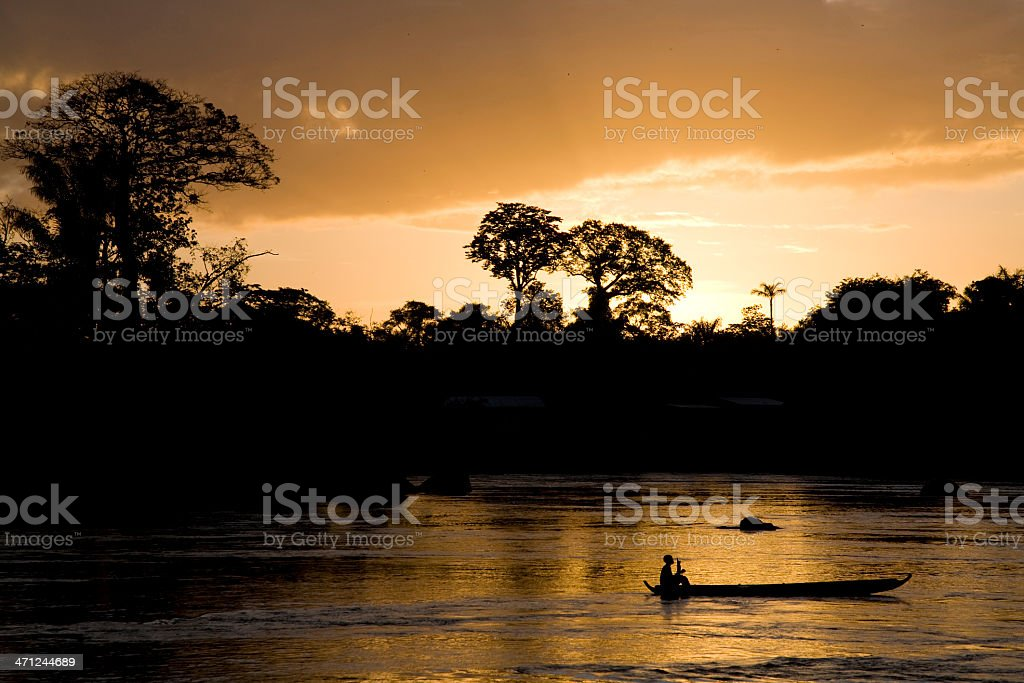 Suriname, nature. stock photo