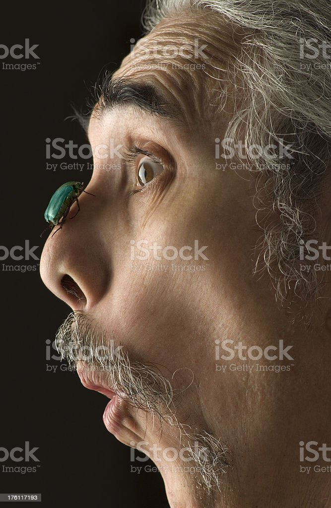 Surprised Man With Insect On His Nose royalty-free stock photo