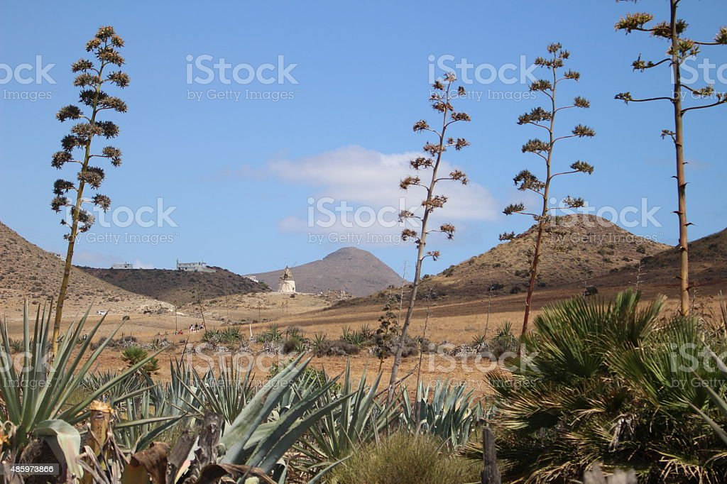 surreal desert landscape with windmill in background stock photo