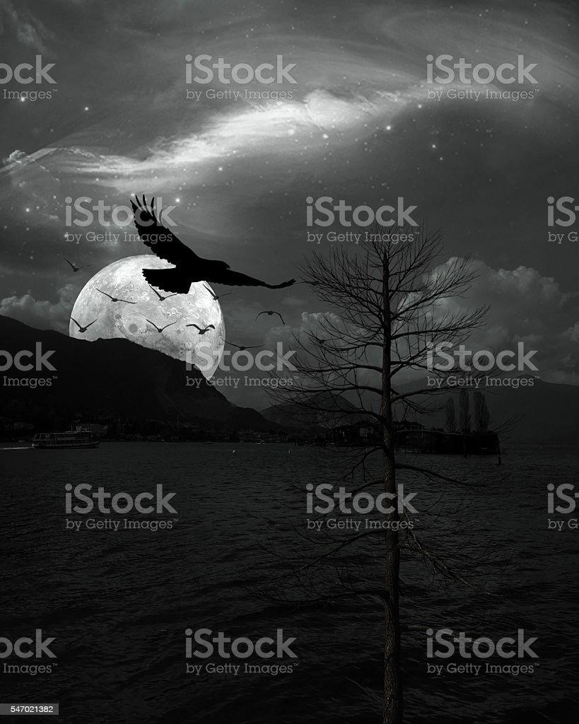 Surreal Lake stock photo