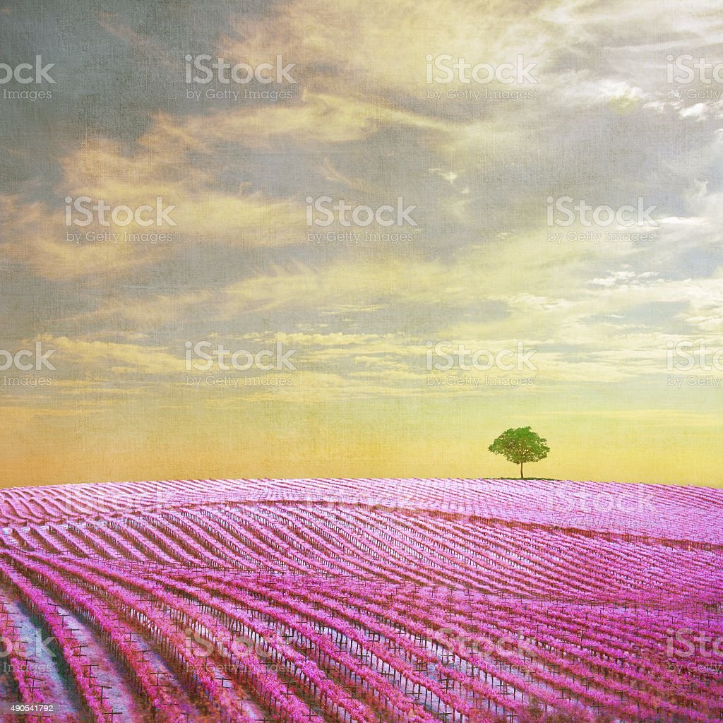 Surreal landscape with single tree stock photo