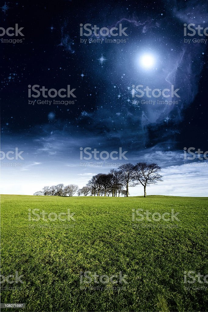 Surreal Mystical Woodland Landscape royalty-free stock photo