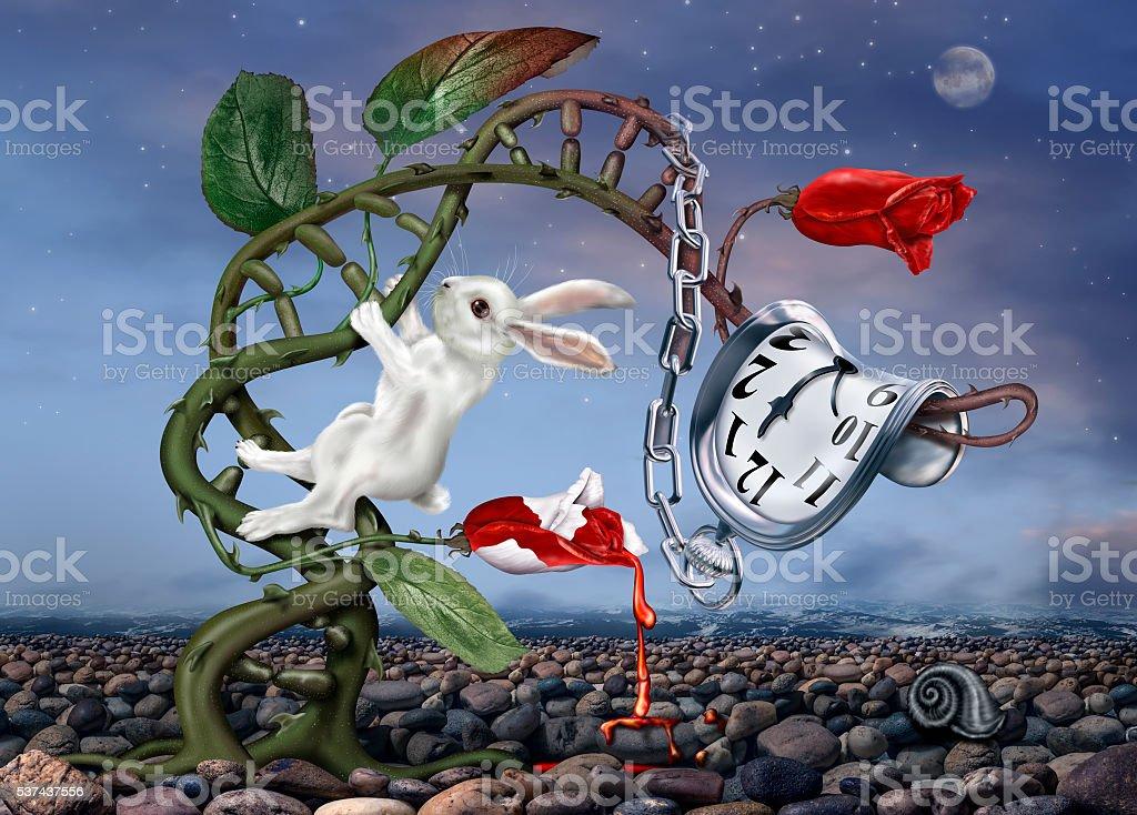 Surreal White Rabbit stock photo