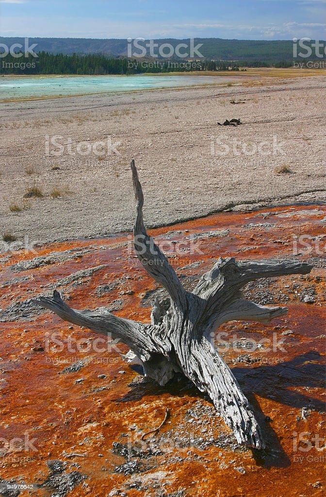 Surreal Yellowstone stock photo