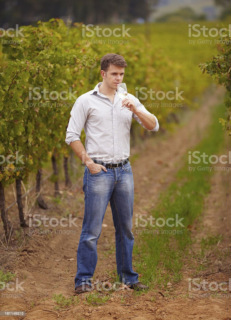 Surrounded by the fruits of his labour royalty-free stock photo