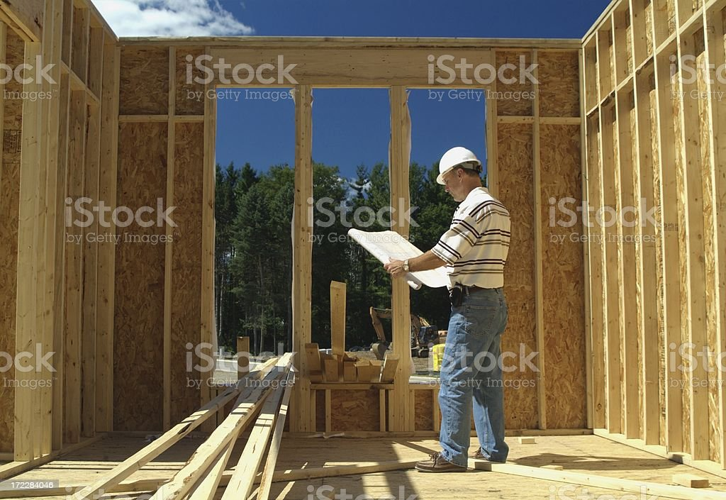 Surveying the Site royalty-free stock photo