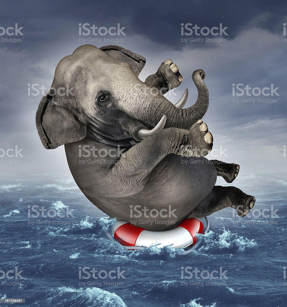 Surviving Adversity stock photo