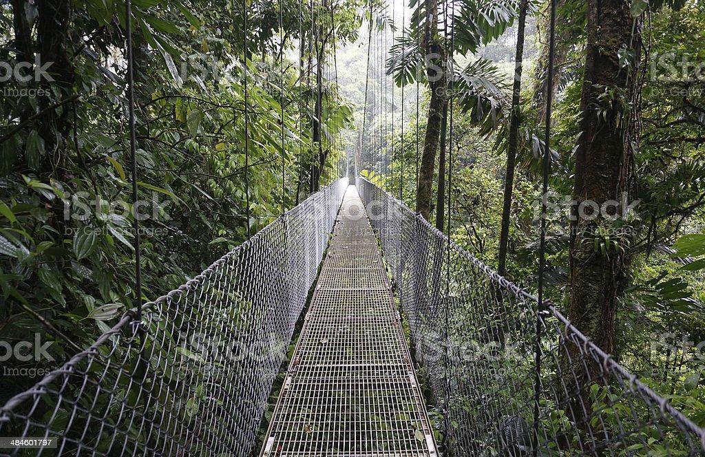 Suspended Bridge at La Fortuna stock photo