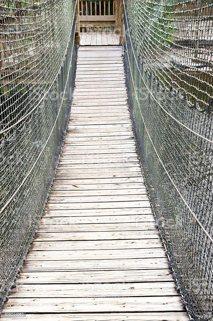Suspension Bridge crossing a River with Alligators stock photo