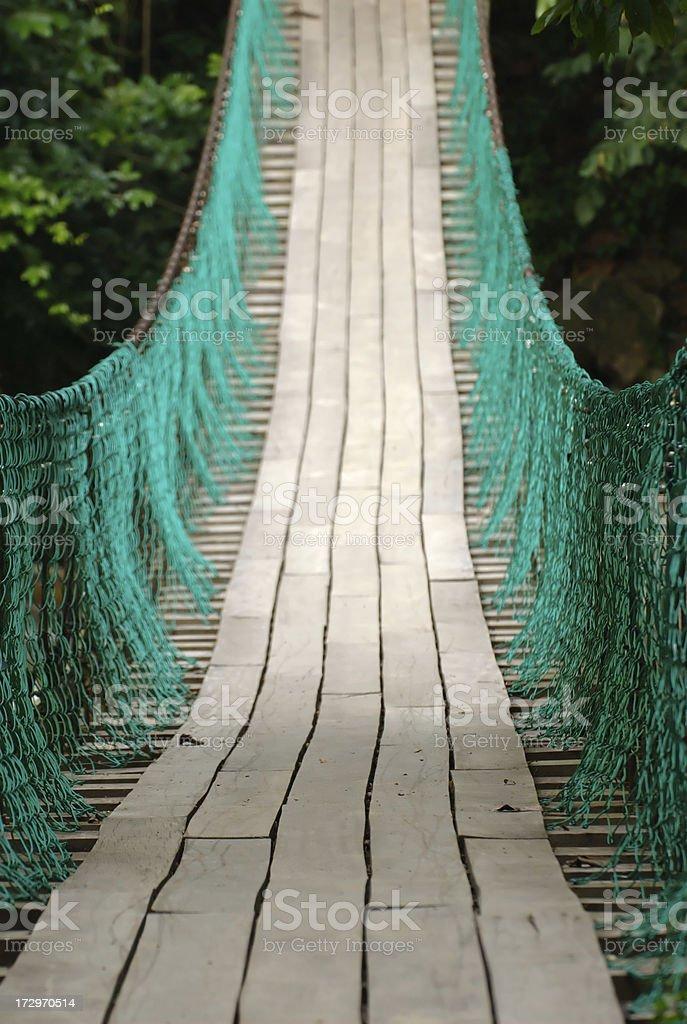 Suspension bridge in Malaysia royalty-free stock photo