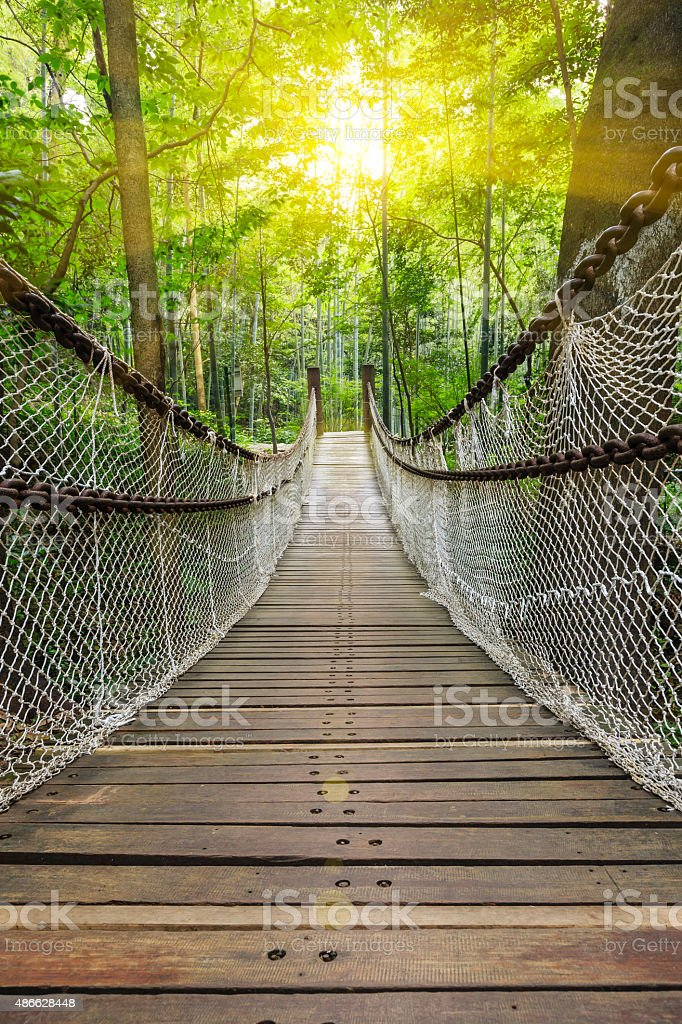 Suspension bridge in the forest stock photo