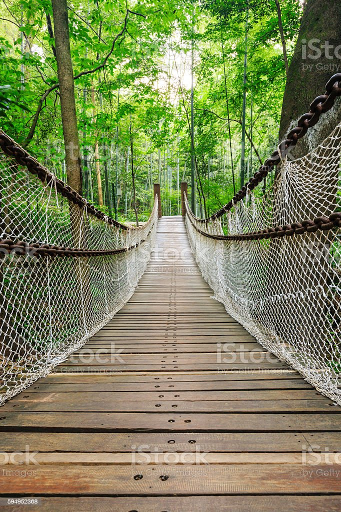 suspension bridge in the green forest stock photo