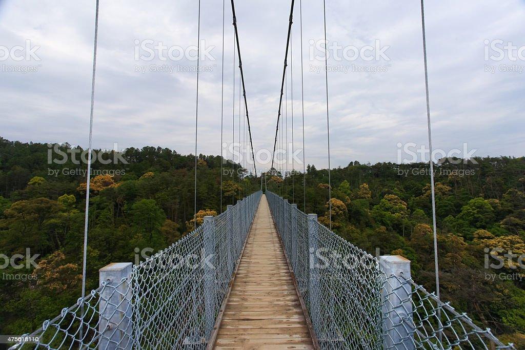 Suspension bridge over nature scene stock photo