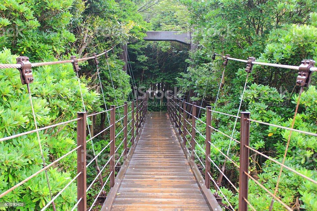 Suspension bridge taken in rainy day stock photo