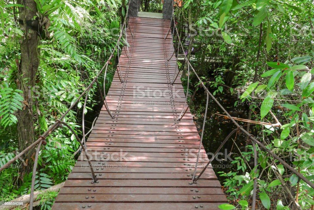 suspension wood bridge  walkway in the forest stock photo