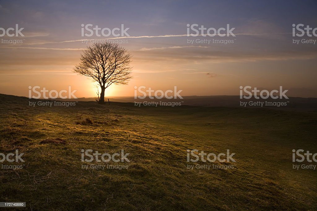 Sussex Sunset royalty-free stock photo