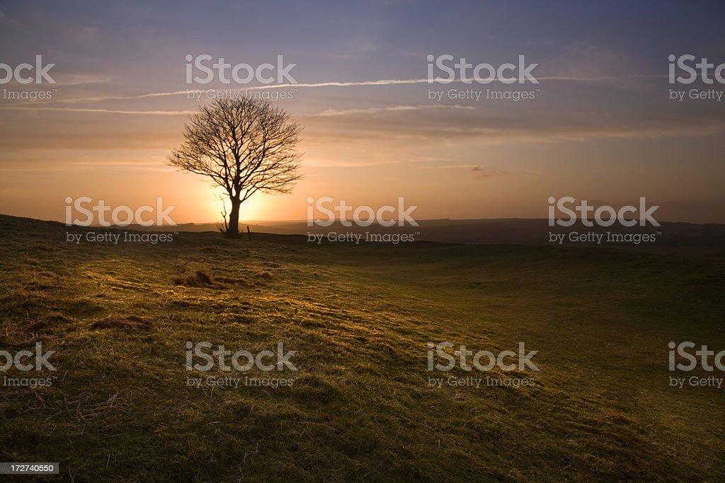 Sussex Sunset stock photo