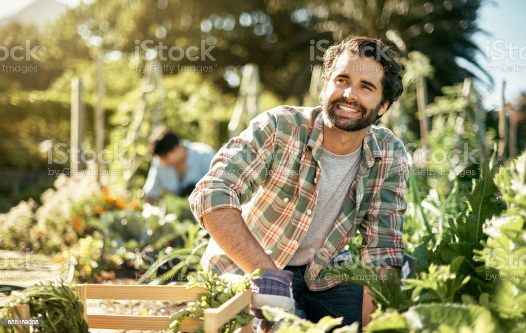 Sustainability is a sense of harmony between man and land stock photo