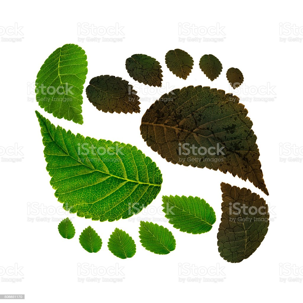 sustainability of ecology against environmental pollution stock photo