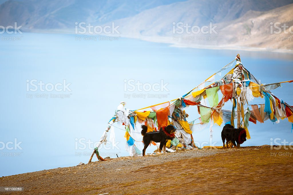 Sutra banner stock photo