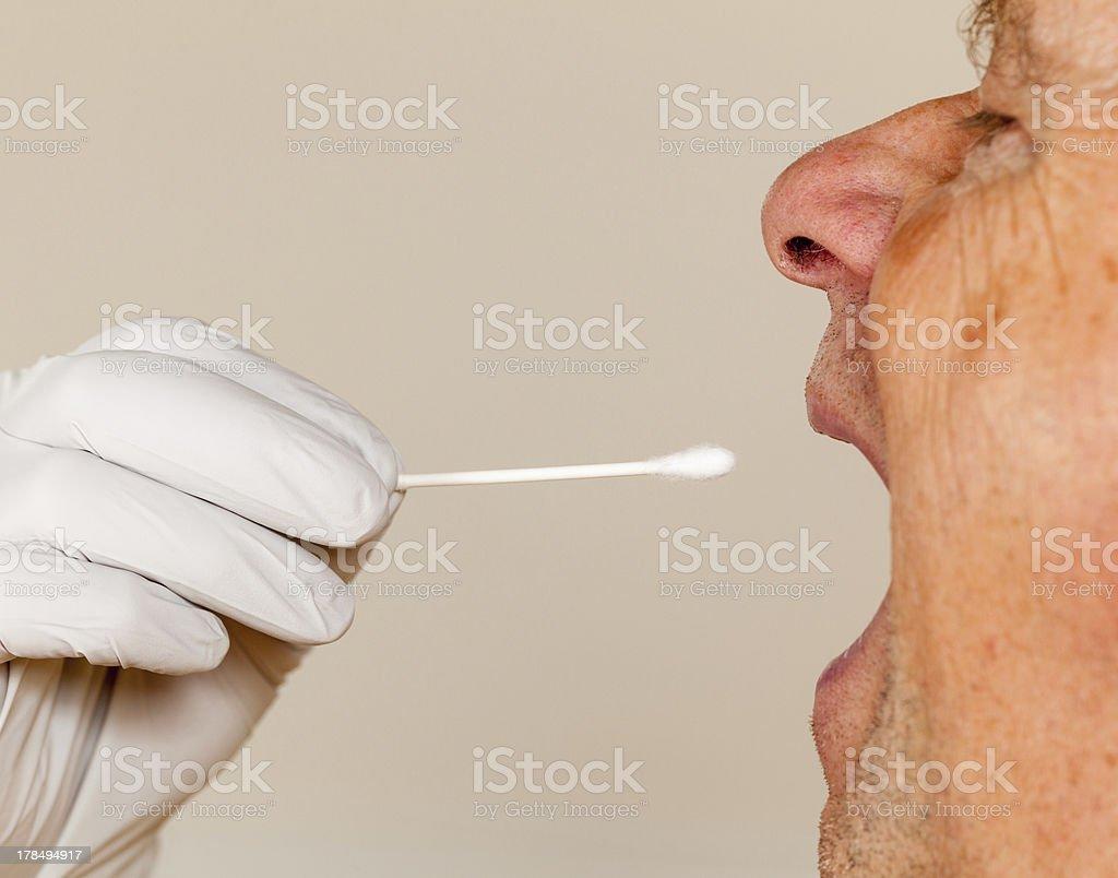 DNA swab of saliva taken from senior man royalty-free stock photo