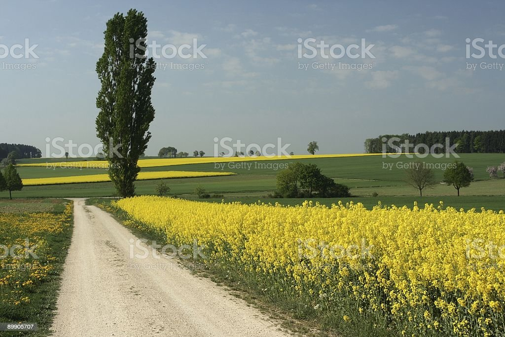Swabian Tuscany stock photo