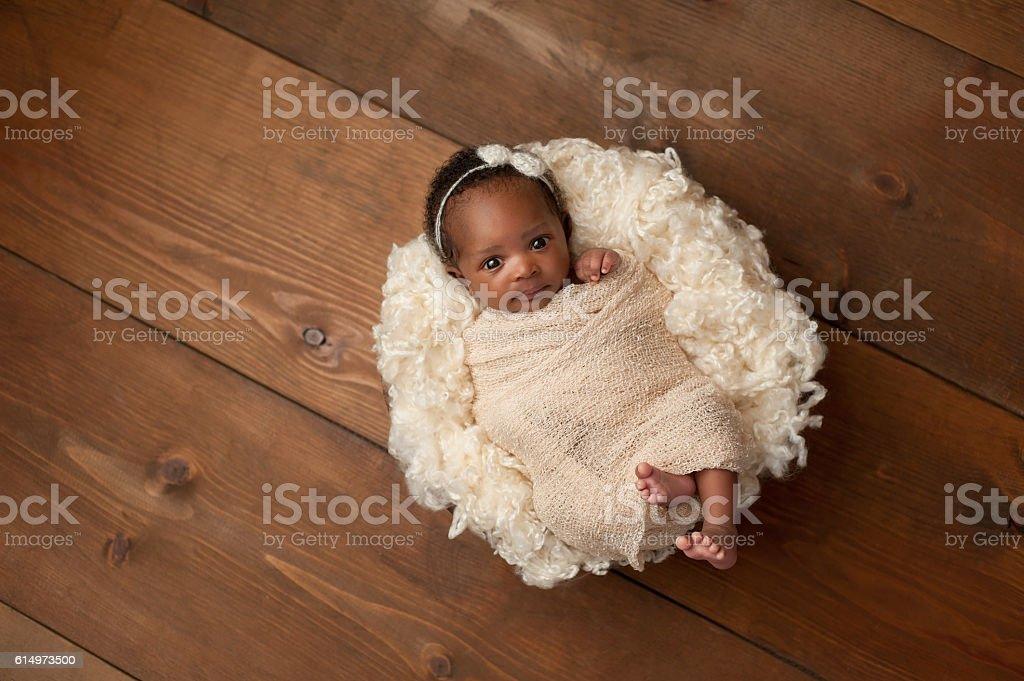 Swaddled Newborn Baby Girl stock photo