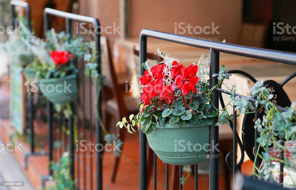 Swag of the fence foto de stock libre de derechos