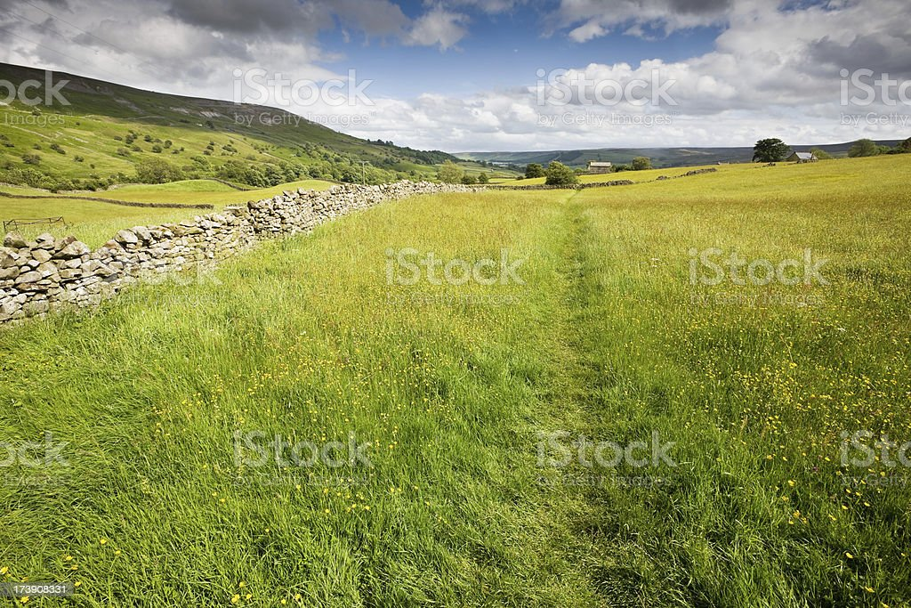 Swaledale Footpath across Meadow royalty-free stock photo