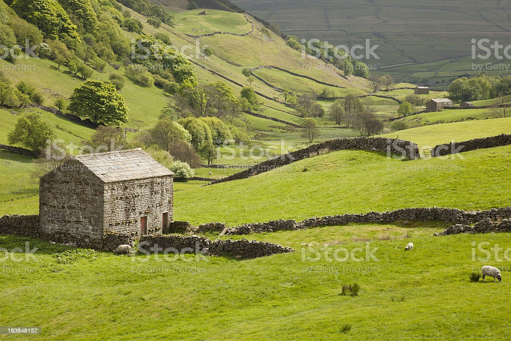 Swaledale in the Yorkshire Dales stock photo