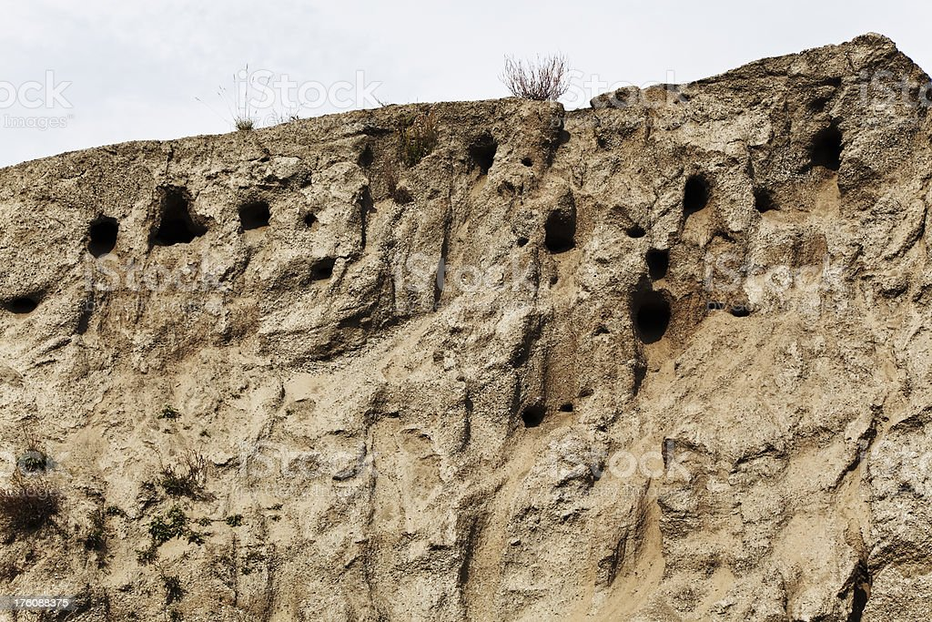 Swallow nests in sand bank. royalty-free stock photo