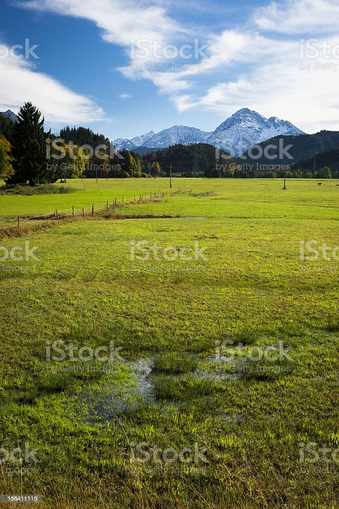 swamp and meadow at autumn with sky royalty-free stock photo