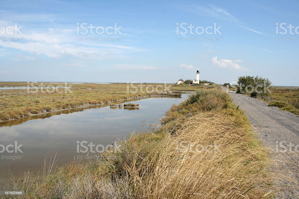 Swamp in French Camargue with Lighthouse royalty-free stock photo