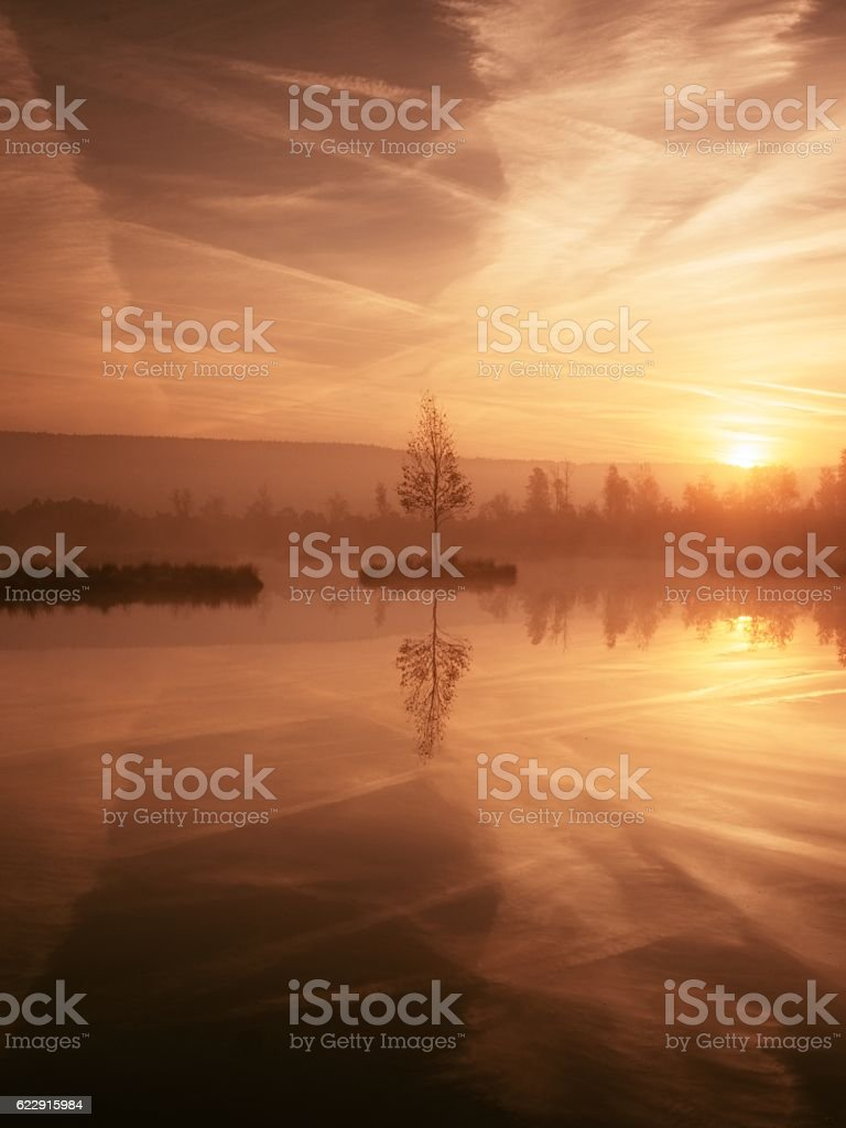 Swampy mountain  lake with mirrored  water level in mysterious forest stock photo