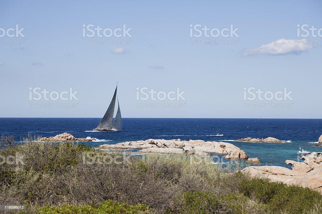 Swan Boat Sailing. royalty-free stock photo