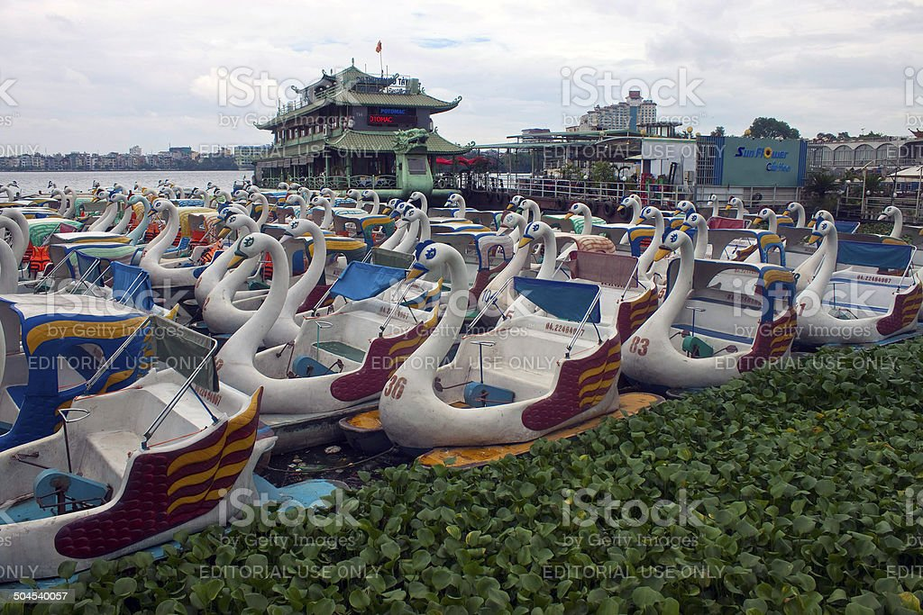 Swan pedal boats stock photo