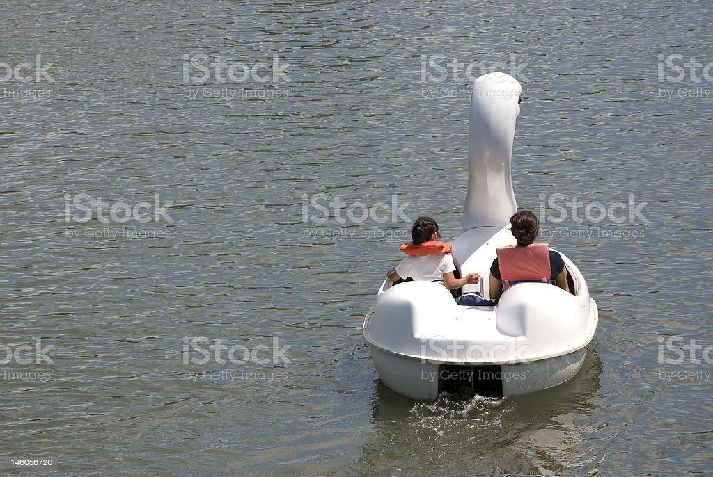 Swan Peddle Boat stock photo