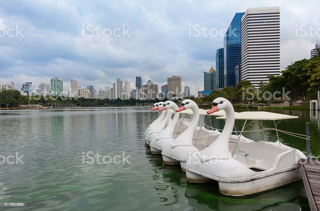 Swan  shaped pedal boat in the park stock photo