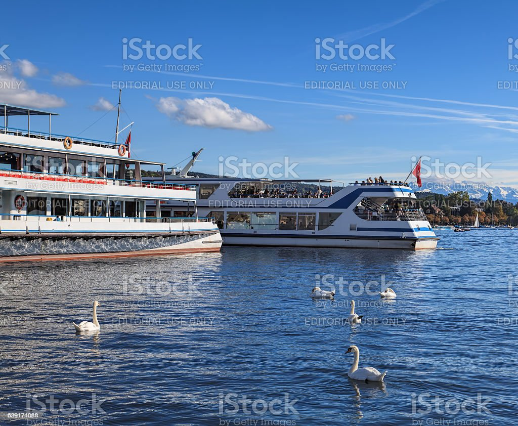 Swans and boats on Lake Zurich in Switzerland stock photo