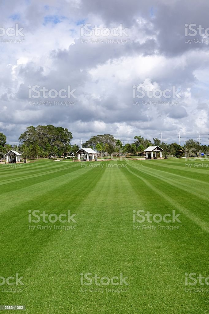 Swaths of freshly mowed grass in alternating rows stock photo