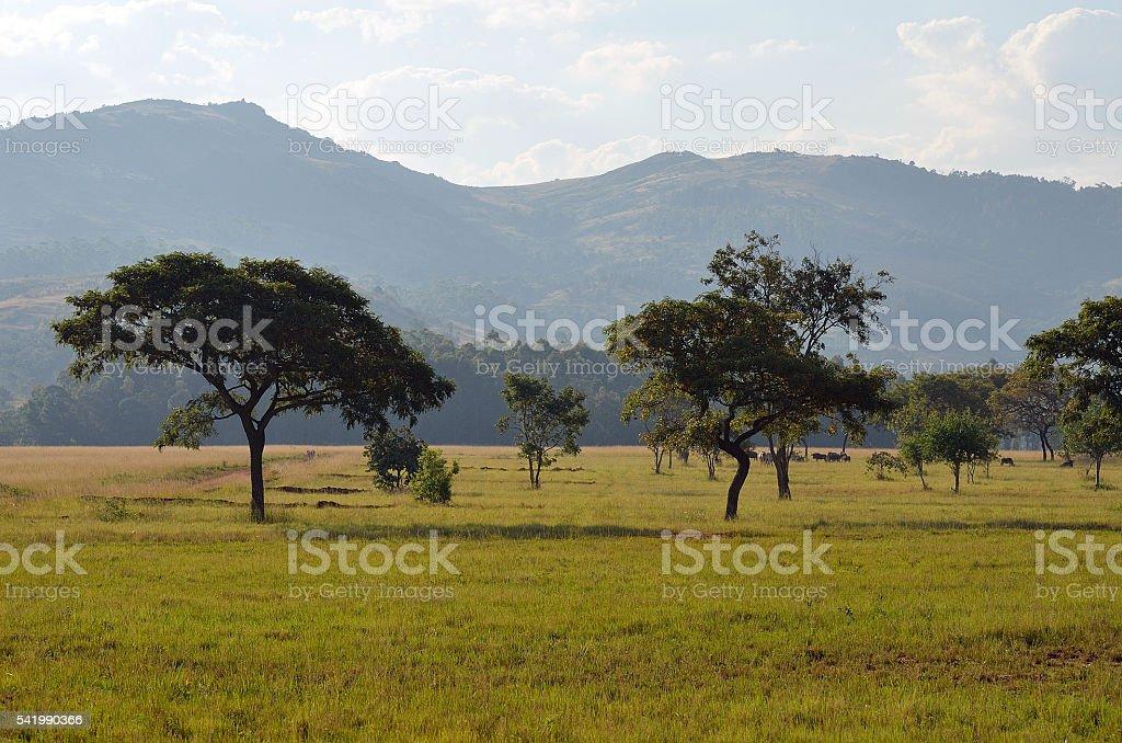 Swaziland Landscape stock photo