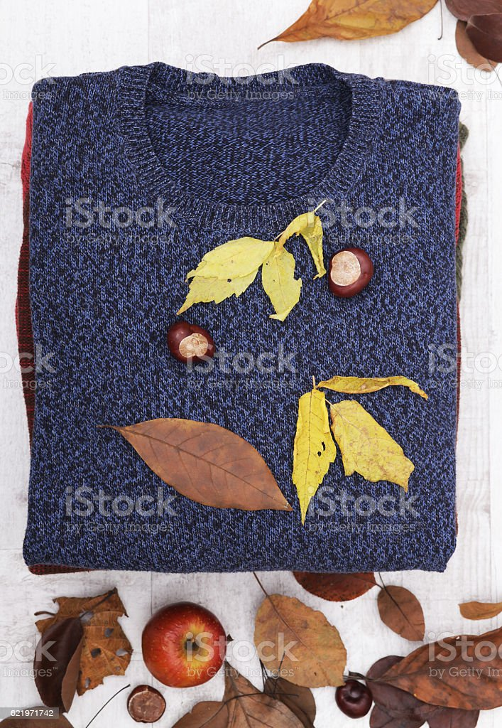 Sweaters  with autumn leaves stock photo