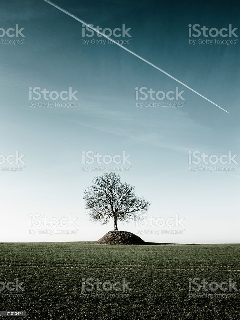 Sweden: lone tree on Bronze Age burial mound stock photo