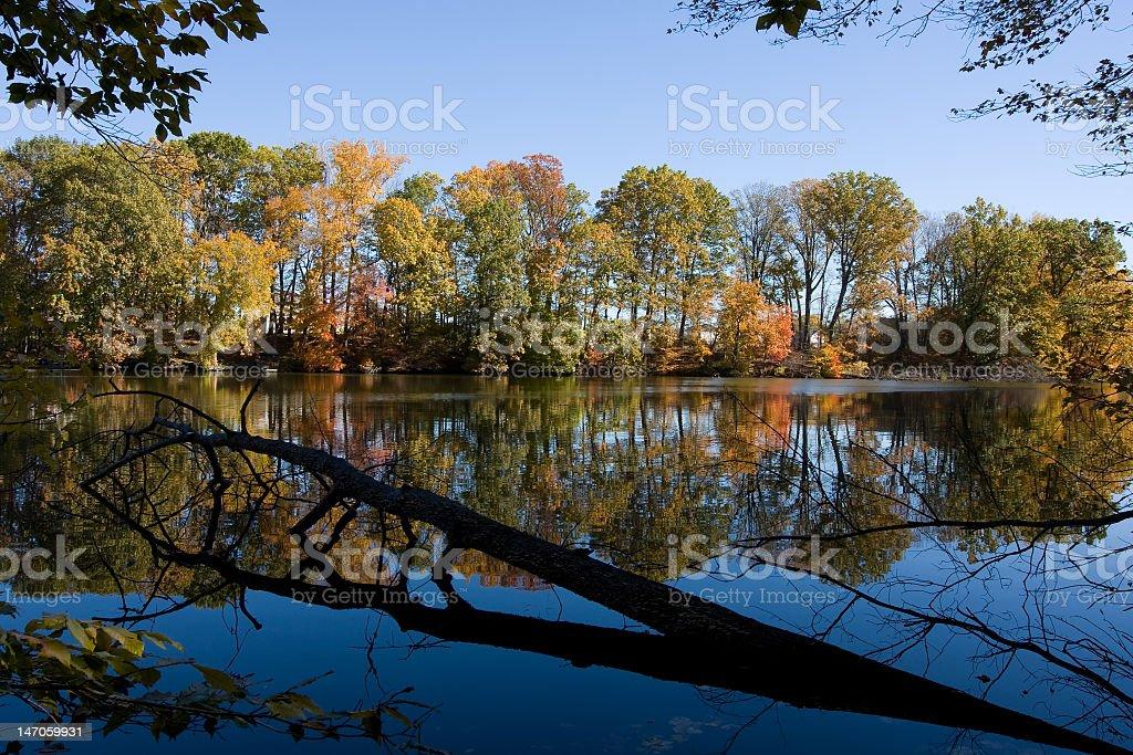 Swedes Lake royalty-free stock photo