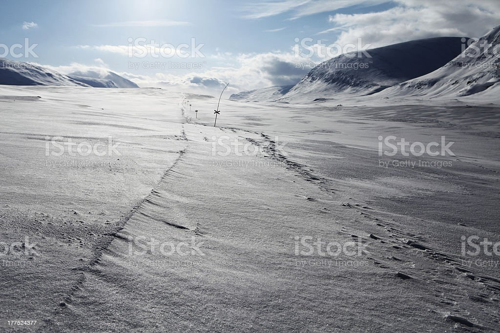 swedisch lapland in the wintertime royalty-free stock photo