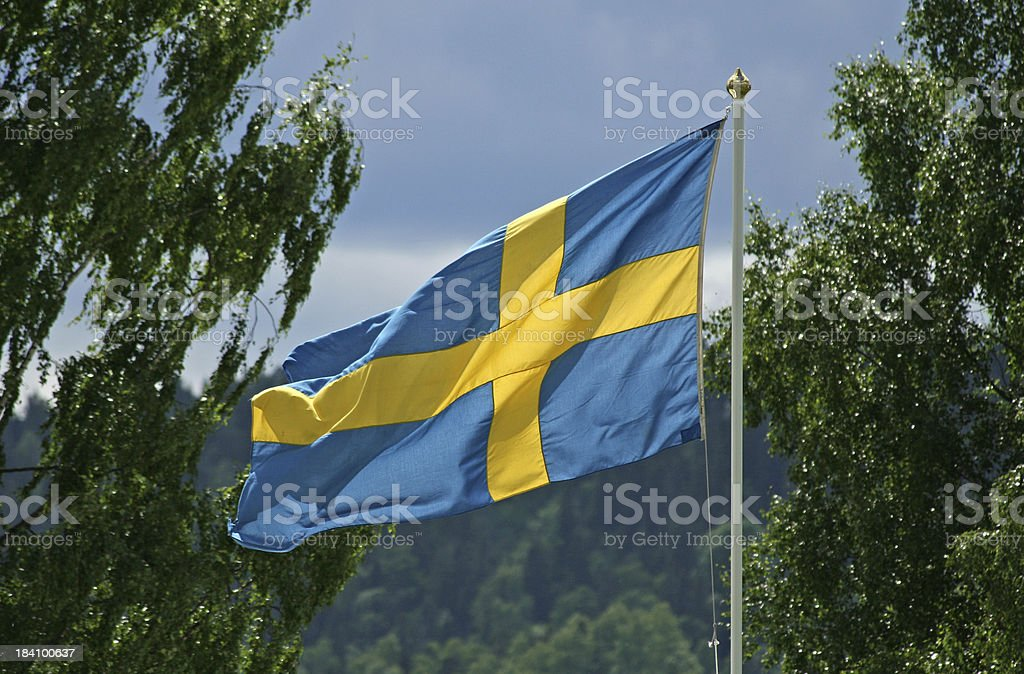 Swedish flag in sun and wind, Sweden stock photo