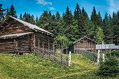 Swedish Hill Farm