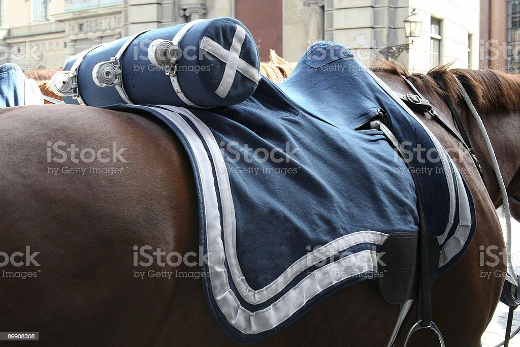 swedish horse guard stock photo
