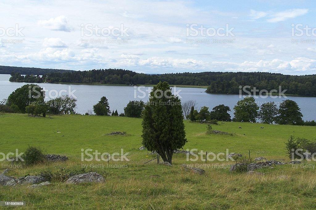 swedish landscape royalty-free stock photo